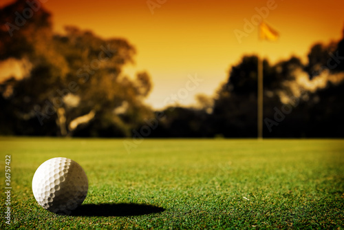 canvas print picture Long Putt