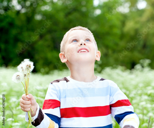 Boy  holds a dandelions in hands