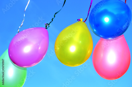 Colorful balloons - 36761867