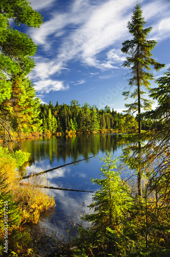 Forest and sky reflecting in lake