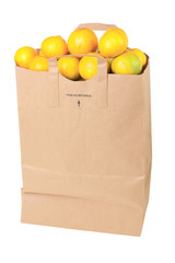 Paper shopping bag with mandarin