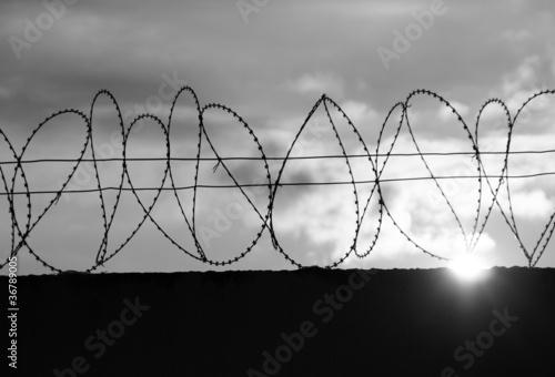 Foto op Plexiglas Wand barbed wire