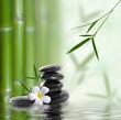 Fototapeten,asien,balance,bambus,buddhismus