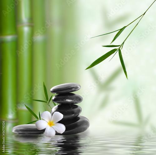 Spa still life z ułożone kamień i bambusa z frangipani flo
