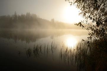 Morning's fog over the lake