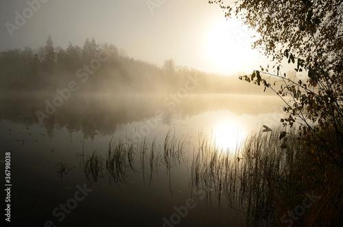 Fototapeta Morning's fog over the lake