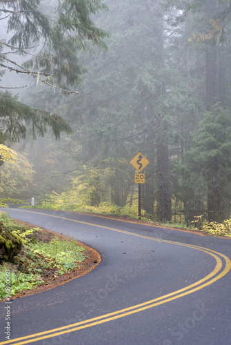 Windy Road on a Foggy Day