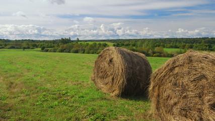 Hay bales field against sky background