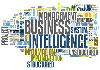 Business intelligence in word tag cloud on white background