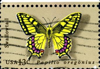 Papilio oregonius. Swallowtail. US postage.