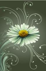 Blume mit Ornament