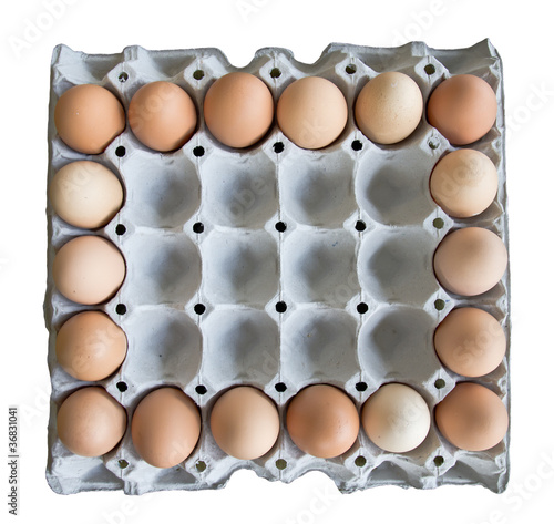 frame carton of eggs