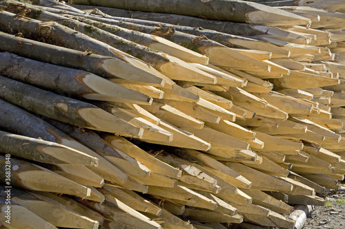 Pile of wooden stakes stacked up