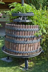 Wine Manufacture