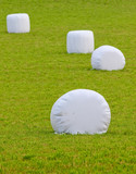 straw bales wrapped in plastic