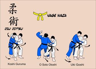 Jiu Jitsu Nage Waza Color