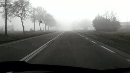Autofahrt bei Nebel