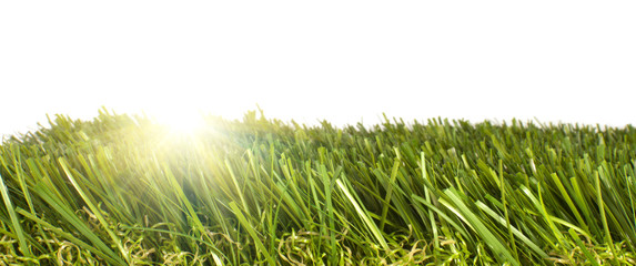 patch of artificial grass with sunlight shining through