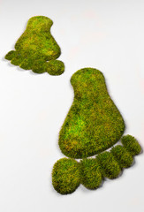 Grass eco footprints