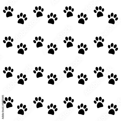 Background with black paw prints
