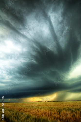 Striations-Overhead