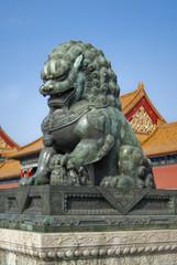 cooper lion