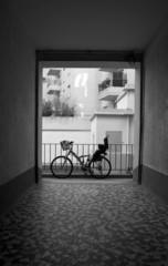 vélo dans la cour