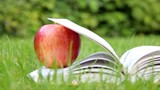 Apple on a book - relax in garden