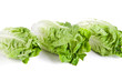 Romana Salatköpfe
