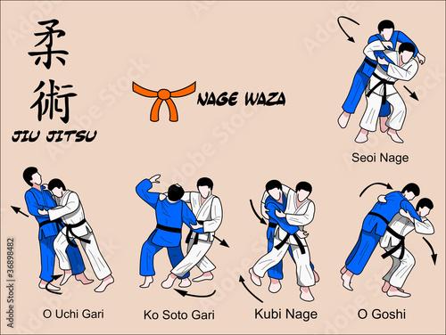 Jiu Jitsu Nage Waza 2 Color