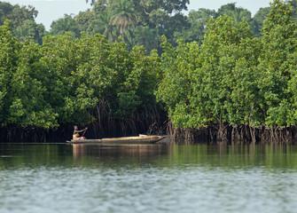 Gambian Woman paddling pirogue