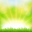 Green Background With Green Grass And Sunburst