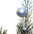 tête de sapin de Noël et sa boule