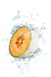 melone splash