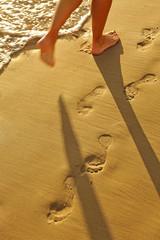 Caminando por la arena, playa de Cádiz