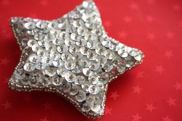 decorazione natalizia_ stella argentata