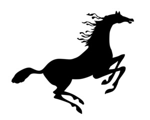 silhouette horse on white background