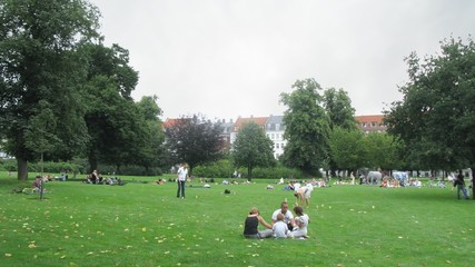 People relax in park