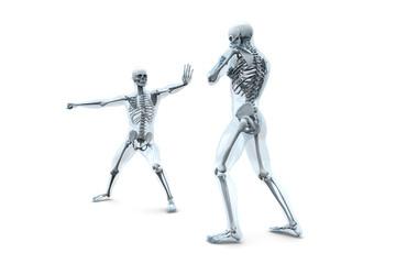 Anatomie - Kampf