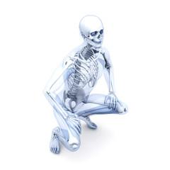 Anatomie - Sitzen
