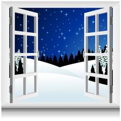 Paesaggio Neve alla Finestra-Winter Snow Landscape Window