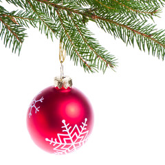 red ball hanging from spruce christmas tree