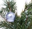 boule de Noël sur une branche de sapin