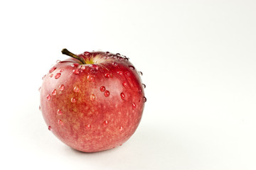 The red appetizing apple isolated on the white