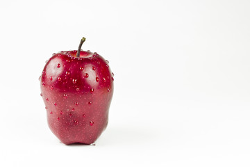 The red appetizing apple with water drops isolated