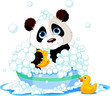 Panda having a bath