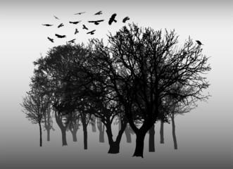 Beautiful winter tree and birds silhouettes, highly detailed
