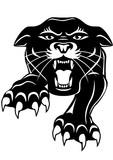 Black panther - 37030456