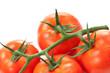 fresh tomato macro shot