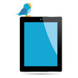Bird twitting on top of a tablet over white